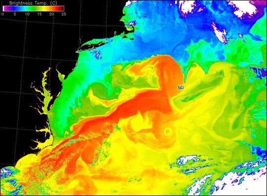 corrente del golfo nasa