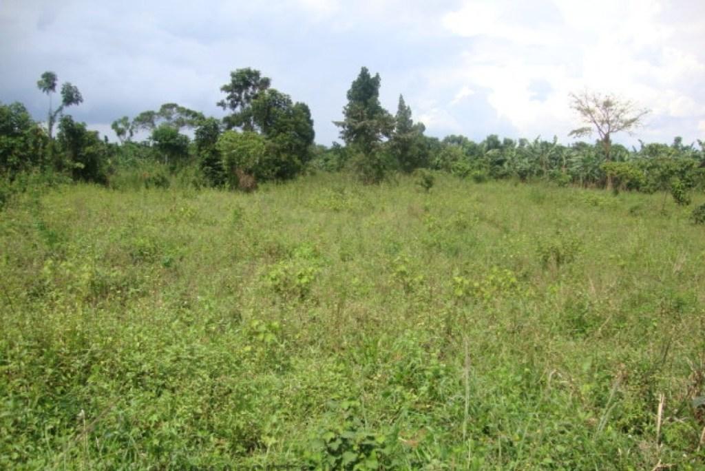 140 PLOTS OF LAND FOR SALE IN  IBEJU-LEKKI, LAGOS