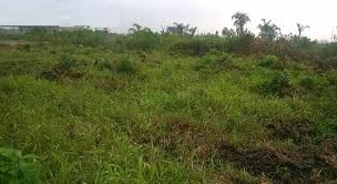 2000 SQUARE METRES BARELAND FOR SALE AT VICTORIA ISLAND
