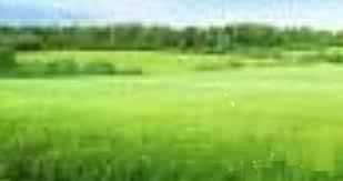 A 1000 SQUARE METRES LAND FOR SALE AT IKOYA, IKOYI, LAGOS