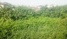 A PLOT MEASURING OVER 704 SQM LAND FOR SALE AT ISHERI NORTH LAGOS