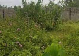 600 SQUARE METRES LAND FOR SALE IN IBEJU-LEKKI, LAGOS