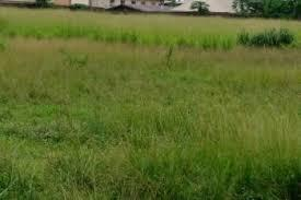 5 PLOTS OF LAND FOR SALE IN  IBEJU-LEKKI, LAGOS  