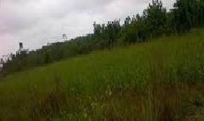 600 SQUARE METRES LAND FOR SALE IN AJAH, LEKKI, LAGOS