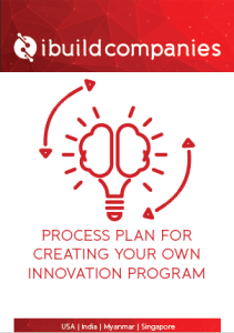 "Download your free PDF: ""Process Plan for Creating Your Own Innovation Program"" - By Jeanne Heydecker - ibuildcompanies.com"