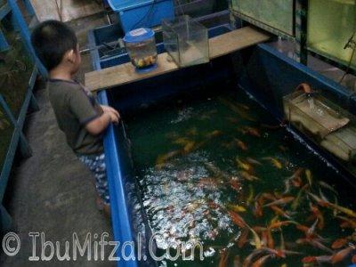 ikan dan mifzal 1.jpg