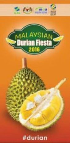 bunting durian fiesta 2016
