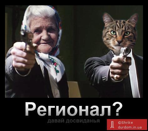 бабуся і коте