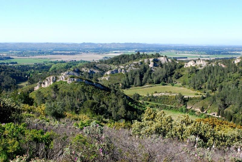 d-wines_provance_01