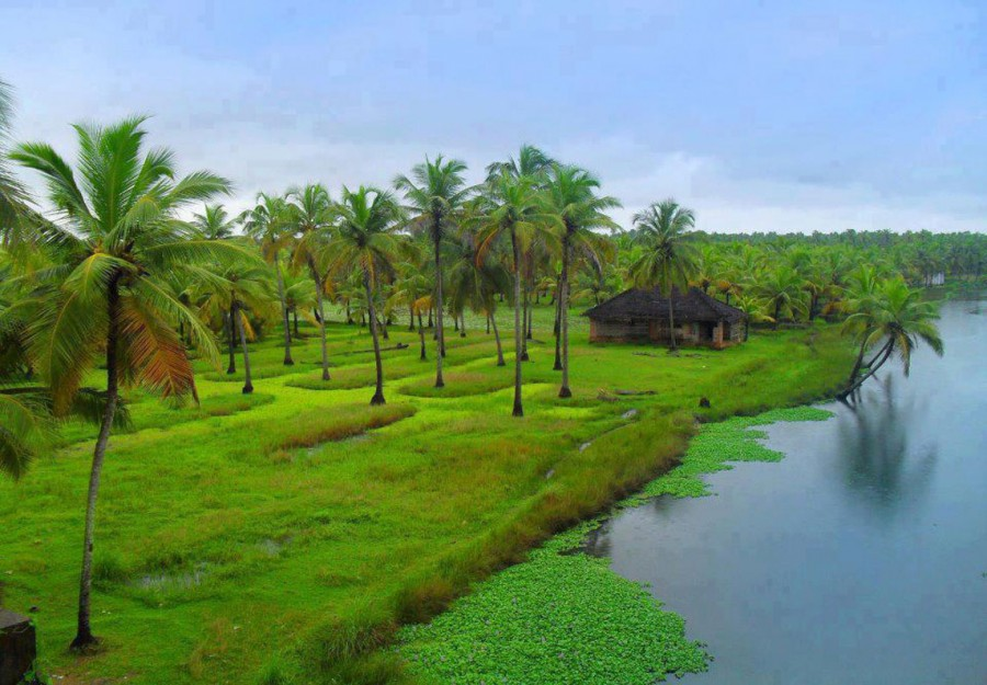 Luxury Kerala Tour Packages