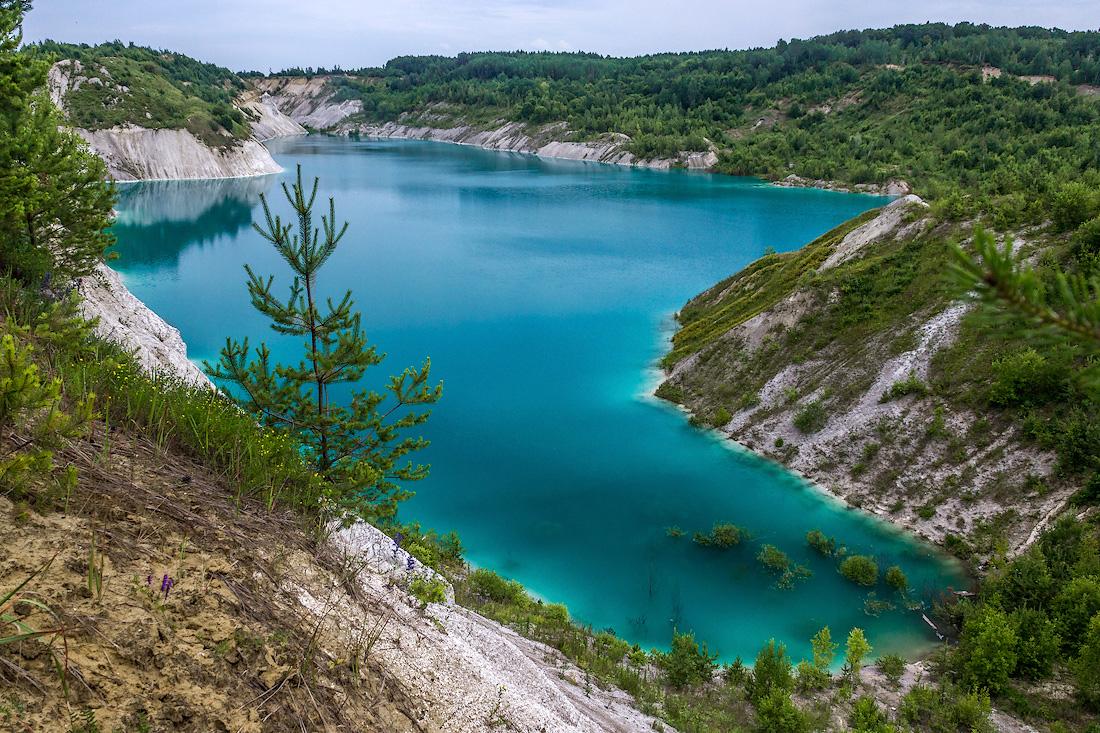 дерева, озера в белоруссии фото вещи