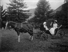 preston seely blog horse and buggy photo.jpg