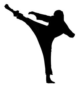 140605-ninja1