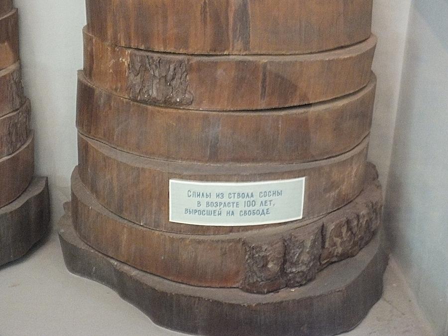 rádiokarbónová datovania definícia WikipediaGemini datovania ďalšie Gemini