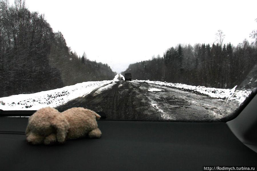 Дорога Н.Новгород - В. Устюг 2012