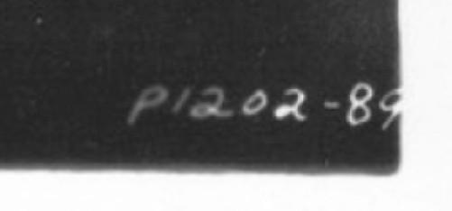 carole lombard p1202-89xx