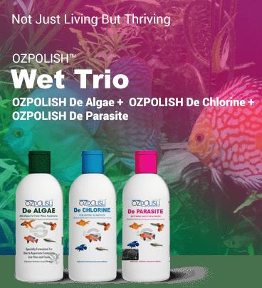 OZPOLISH Wet Trio