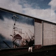 Ed the dog against billboards