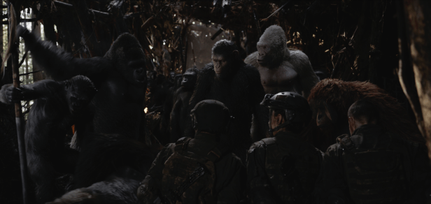 Apes gather in WAR FOR THE PLANET OF THE APES