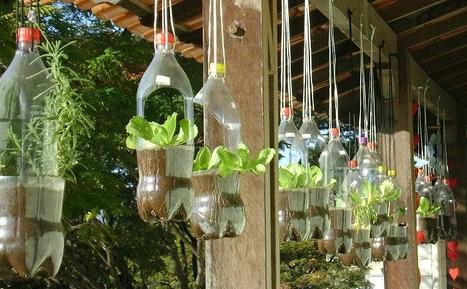 macetas hechas con botellas de plástico recicladas