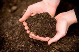El compostaje es un proceso fácil de hacer y con un coste económico mínimo
