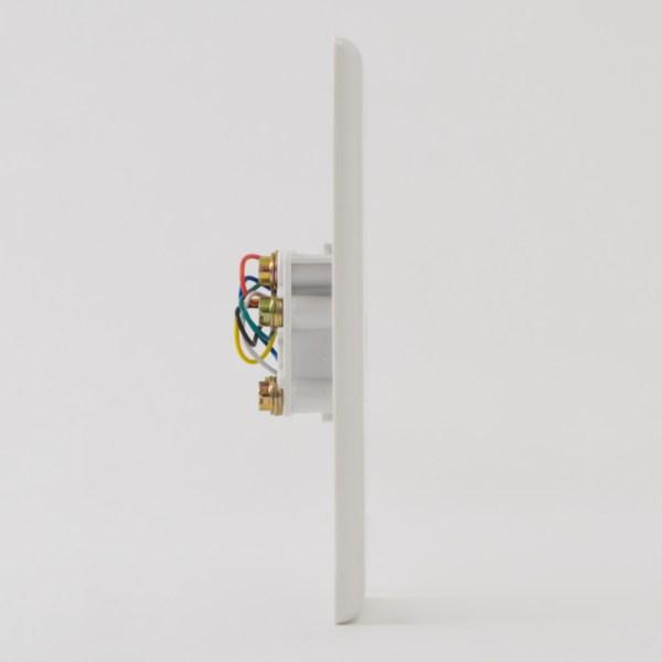 Faceplate 6P6C Screw Terminals Side IC630E60WH