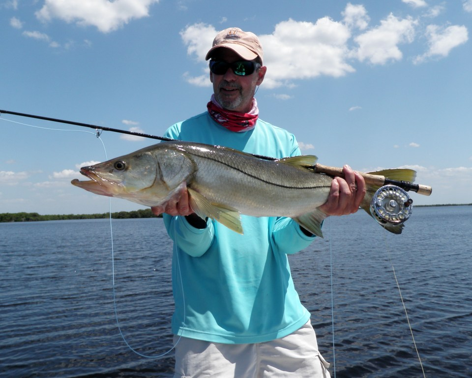 Snook fly fishing Naples