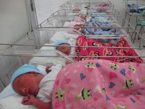 Những đứa trẻ ca sinh 5 đầu tiên ở Việt Nam háo hức vào lớp 1 - 5