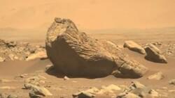 NASA'nın Perseverance uzay aracı, Mars'ta tuhaf bir kaya buldu