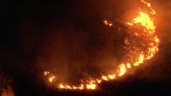 Bodrum'da otluk ve makilik alanda yangın çıktı