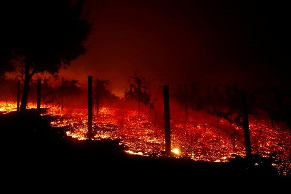 ABD'de orman yangını: 9 ölü