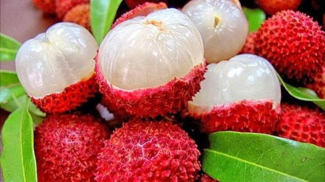 What is lychee #4