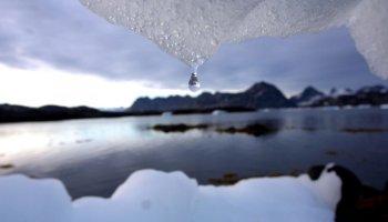 Buzul erimesi hızlandı #1