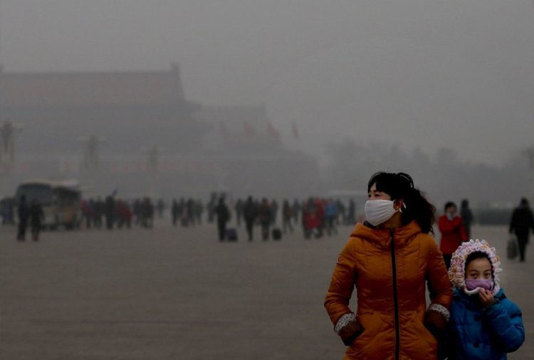 Fosil yakıtların neden olduğu hava kirliliği nedeniyle 2018 de 8,7 milyon insan öldü #3
