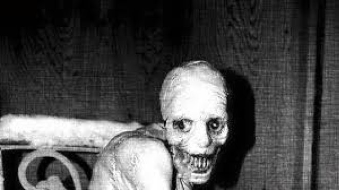 What is the Russian sleep experiment, is it real?  How was the Russian sleep experiment done?  #one