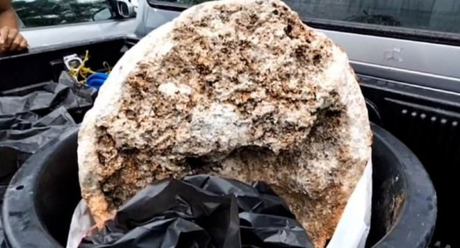 What is ambergris #1