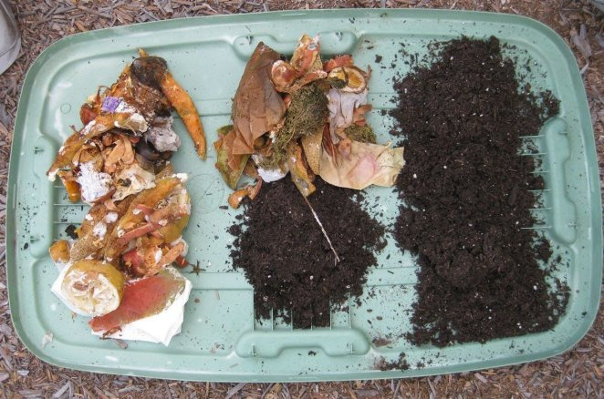 What is compost #1