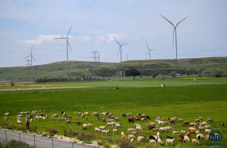 Türk bilim insanından rüzgar enerjisinde verimliliği artıran yeni yöntem #6