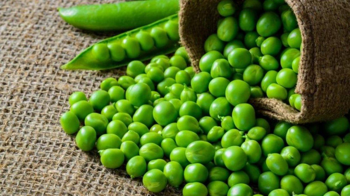diyetinize ekleyebileceginiz yuksek proteinli 10 sebze 9976