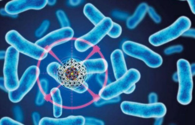 10 deadly viruses and bacteria #8 produced in labs