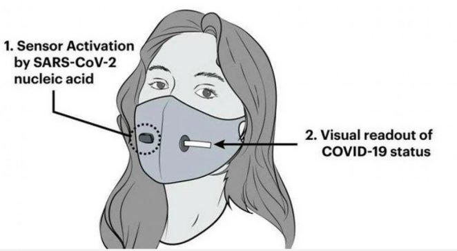 A mask that can detect coronavirus was developed in the USA #6