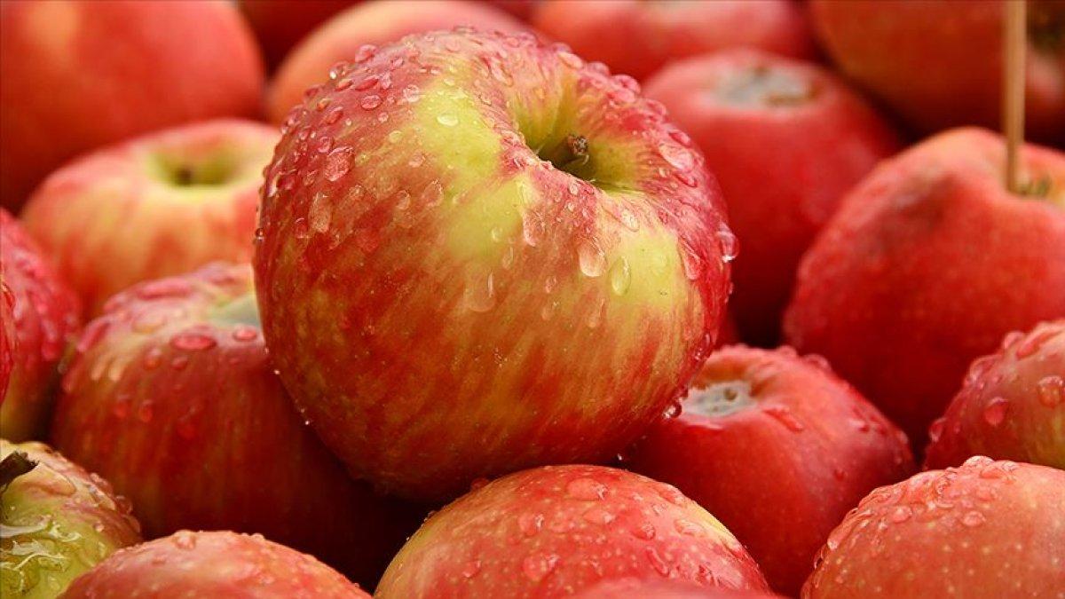 vitamini kabugunda elma kabugunun 5 faydasi 9053