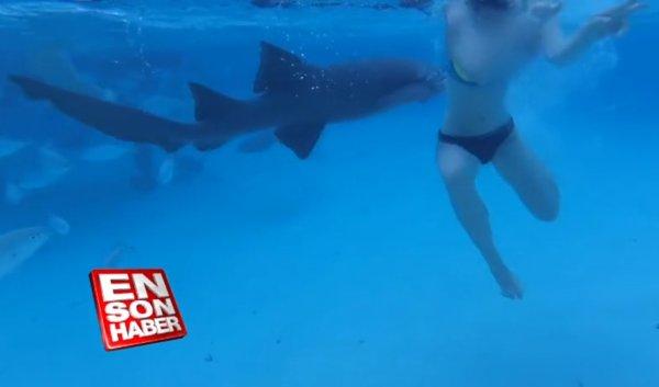Eşine saldıran köpek balığını kameraya kaydetti