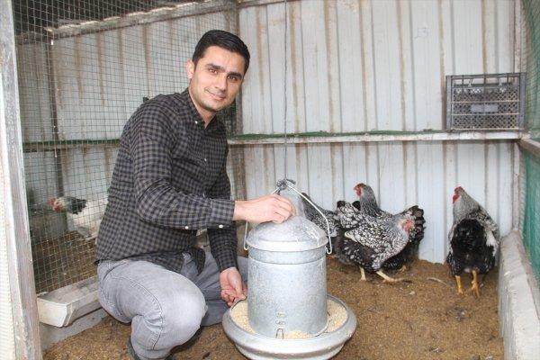 Süs tavuklarının yumurtası 50 liradan satılıyor