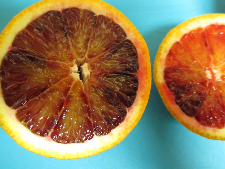 Halved blood orange