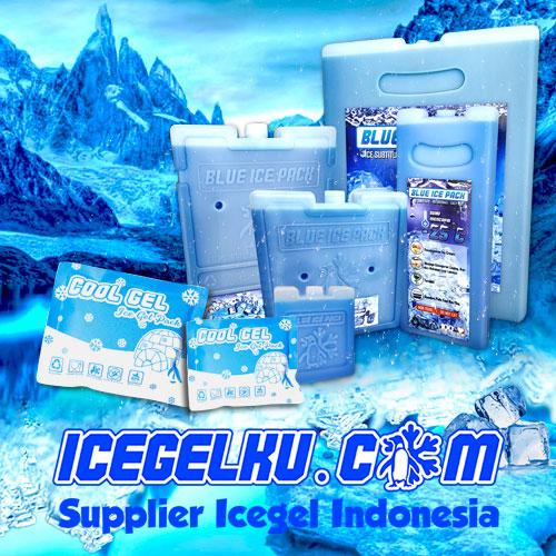 ice gel ice pack termurah