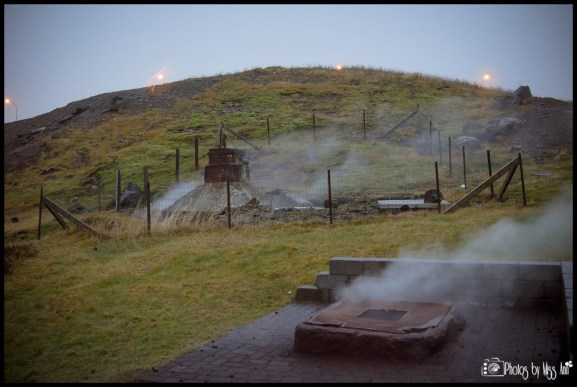 Hotel on Geothermal Grounds Frost and Fire Iceland Wedding Planner