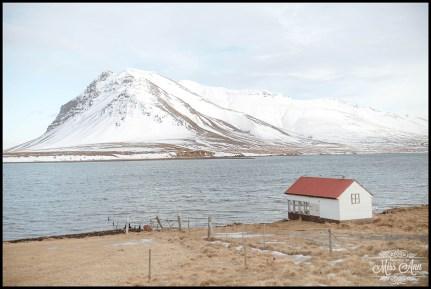Snaefellsnes Peninsula Iceland Wedding Photographer