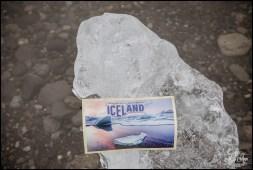 Iceland Destination Wedding Invite