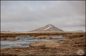 Northern Iceland Wedding